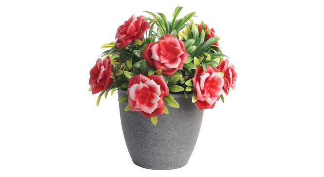 Betty Artificial Plant by Urban Ladder - Front View Design 1 - 337627