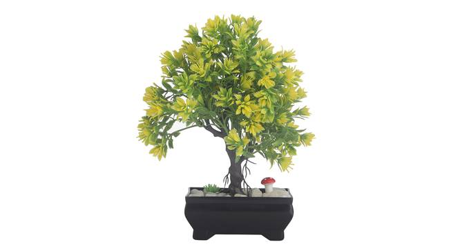 Dinah Artificial Plant by Urban Ladder - Front View Design 1 - 337725