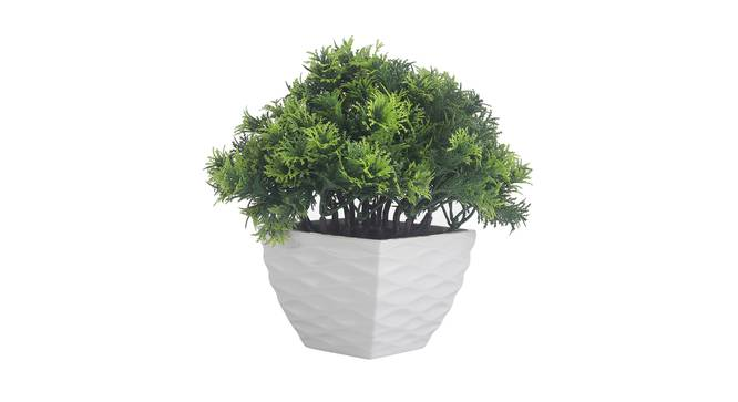 Eleanora Artificial Plant by Urban Ladder - Front View Design 1 - 337729