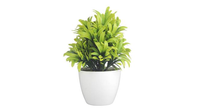 Eleni Artificial Plant by Urban Ladder - Front View Design 1 - 337730