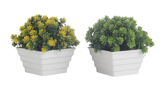 Eugenie Artificial Plant by Urban Ladder - Cross View Design 1 - 337794