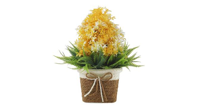 Pia Artificial Plant by Urban Ladder - Front View Design 1 - 337830