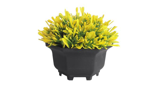 Mila Artificial Plant by Urban Ladder - Front View Design 1 - 337835