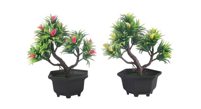 Sheridan Artificial Plant by Urban Ladder - Front View Design 1 - 337938