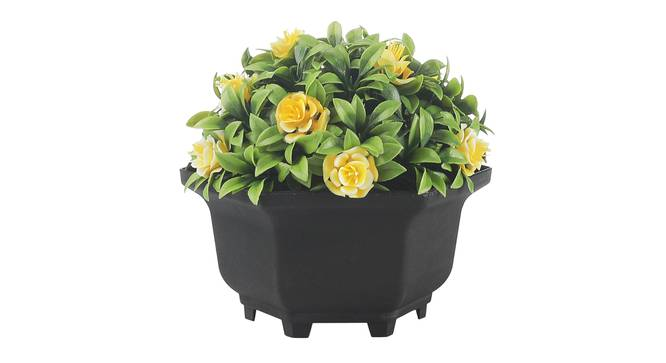 Tala Artificial Plant by Urban Ladder - Front View Design 1 - 337986