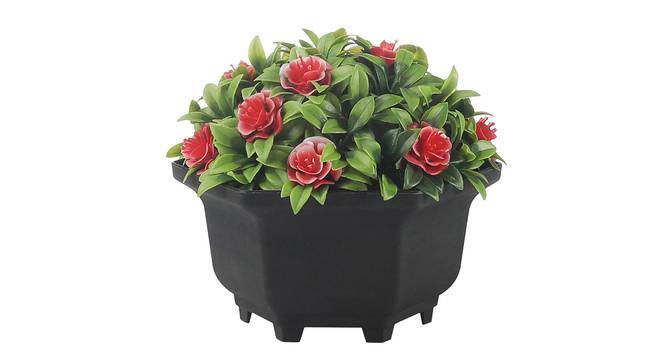 Tallulah Artificial Plant by Urban Ladder - Front View Design 1 - 337987