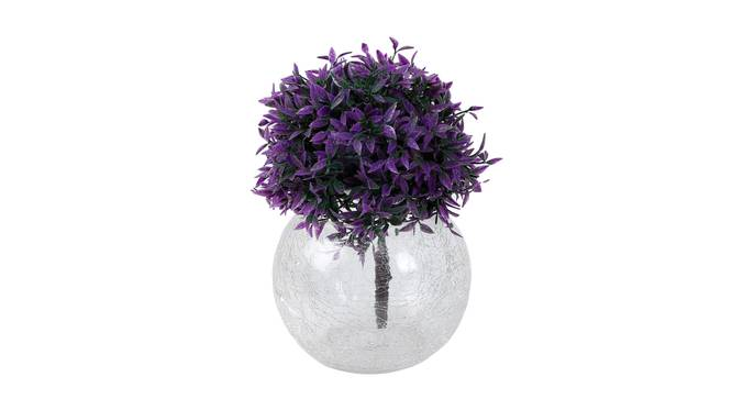 August Vase (Clear) by Urban Ladder - Front View Design 1 - 338116