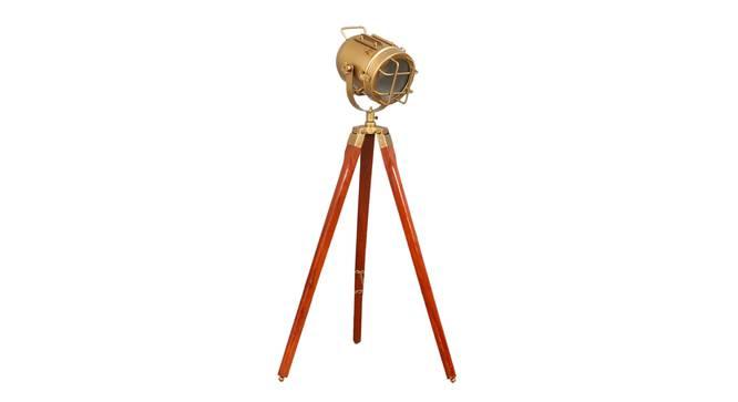 Mirabelle Floor Lamp (Walnut, Antique Brass Shade Colour) by Urban Ladder - Front View Design 1 - 338726