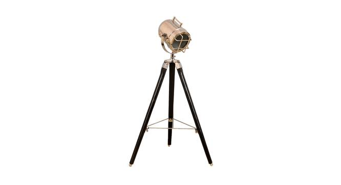 Pascale Floor Lamp (Black, Nickel Shade Colour) by Urban Ladder - Front View Design 1 - 338762