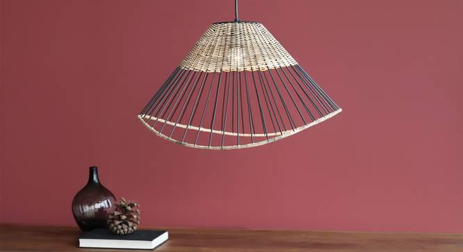 Kyoto Dome Hanging Lamp (Black Finish) by Urban Ladder - Design 1 Half View - 338886