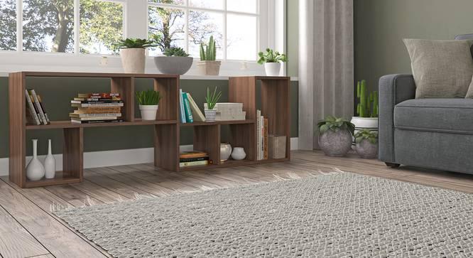 Hayden Display Shelf (35-book capacity) (Classic Walnut Finish) by Urban Ladder - Full View Design 1 - 338973