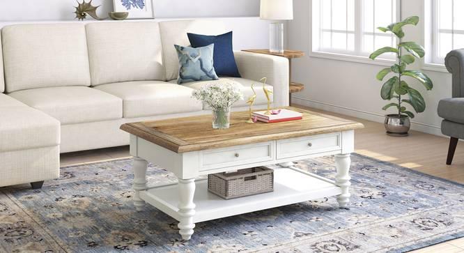 Reagan Coffee Table (Dual Tone Finish) by Urban Ladder - Full View Design 1 - 348555