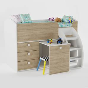 Kids Loft Beds Design