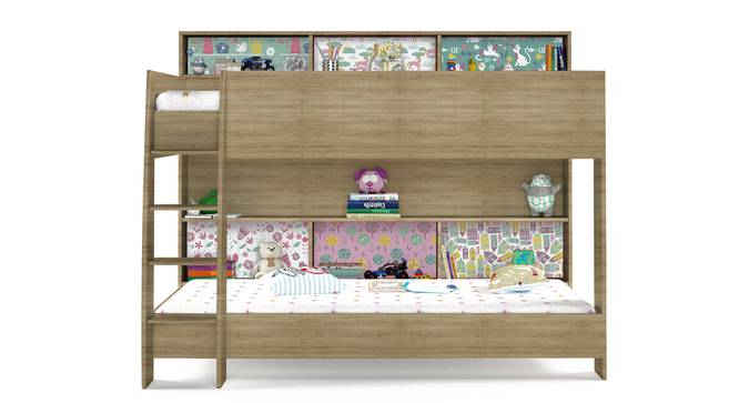 Rainbow Bunk Bed By Boingg! (Oak, Matte Finish) by Urban Ladder - Front View Design 1 - 349662