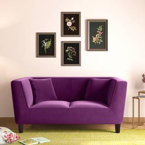 Janet Loveseat (Plumy Purple Velvet) by Urban Ladder - Full View Design 1 -