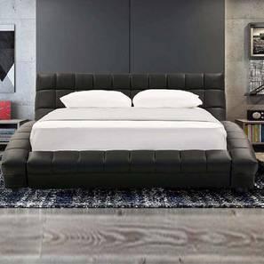 Essential Platform Non Storage Bed (Black, Queen Bed Size) by Urban Ladder - Design 1 - 361229