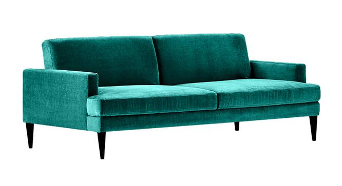 Zoya Sofa Cum Bed (Green) by Urban Ladder - Front View Design 1 - 363254