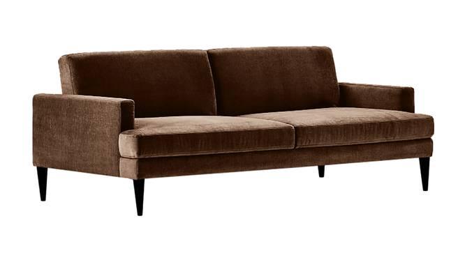 Zoya Sofa Cum Bed (Brown) by Urban Ladder - Front View Design 1 - 363266
