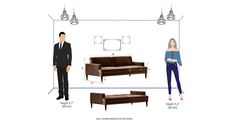 Zoya sofa cum bed brown 6
