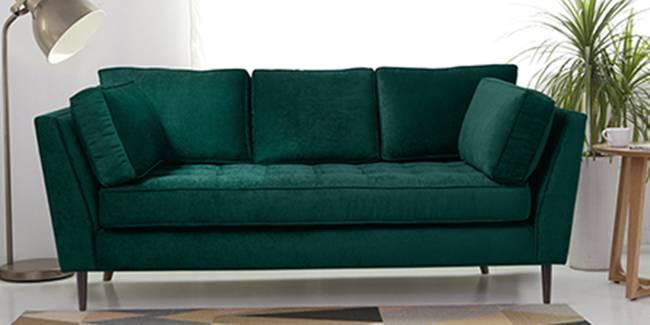 Pierre Fabric Sofa(Green) (Green, 3-seater Custom Set - Sofas, None Standard Set - Sofas, Fabric Sofa Material, Regular Sofa Size, Regular Sofa Type)