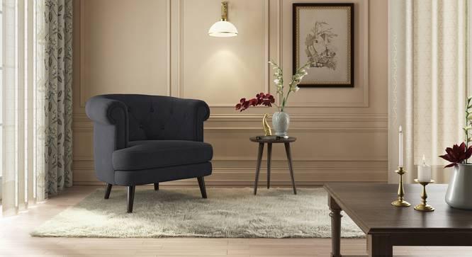 Bardot Lounge Chair ( Space Grey Velvet) by Urban Ladder - Full View Design 1 - 369117