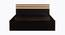 Caroline Bed (Queen Bed Size, Laminate Finish, Wenge) by Urban Ladder - Front View Design 1 - 371562