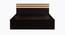 Flint Bed (King Bed Size, Laminate Finish, Wenge) by Urban Ladder - Front View Design 1 - 371917