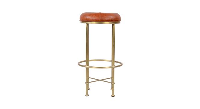 Ashleigh Bar Stool (Leather & Iron Finish, Tan & Brass) by Urban Ladder - Front View Design 1 - 374367