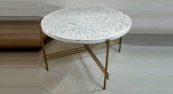 Maria Coffee Table (Terrazzo & Brass, Terrazzo & Brass Finish) by Urban Ladder - Cross View Design 1 - 374434