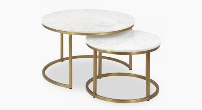 Selma Nesting Coffee Table Set of 2 (Brass White, White & Brass Finish) by Urban Ladder - Cross View Design 1 - 374442