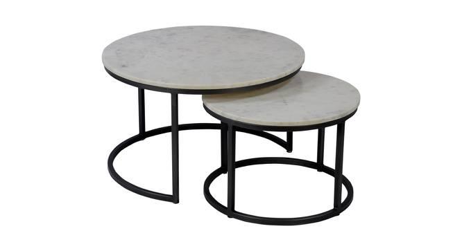 Shirin Nesting Coffee Table Set of 2 (Black & White, Black & Green Finish) by Urban Ladder - Cross View Design 1 - 374443