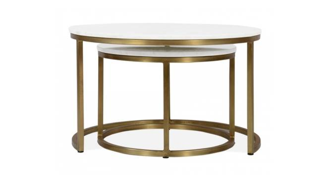 Selma Nesting Coffee Table Set of 2 (Brass White, White & Brass Finish) by Urban Ladder - Front View Design 1 - 374469