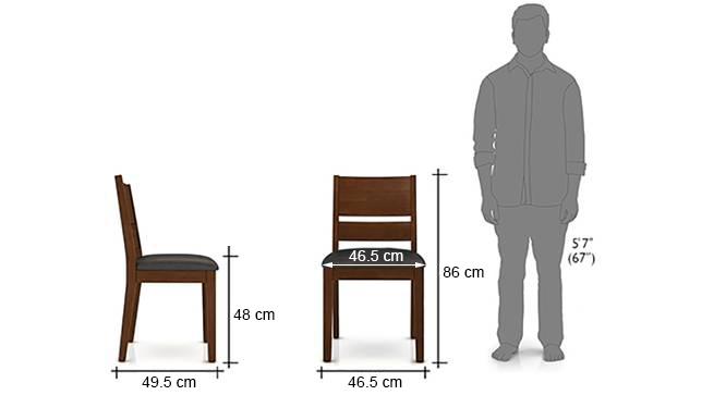 Cabalo dining chairs set of 2 black dark walnut finish dim1