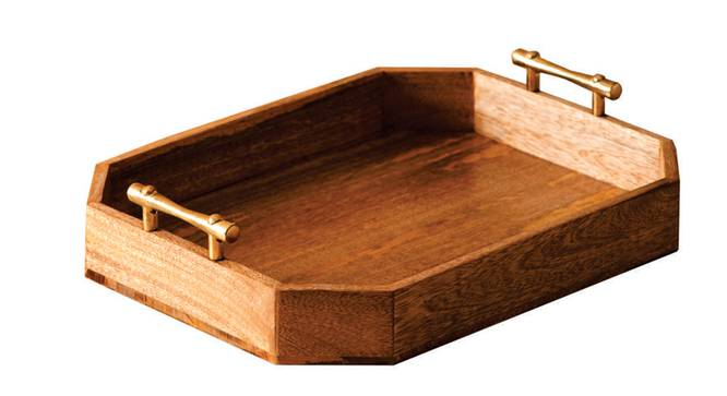 Edison Tray (Brown & Gold) by Urban Ladder - Front View Design 1 - 379010