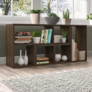 Hayden Display Shelf (35-book capacity) (Californian Walnut Finish) by Urban Ladder - Full View Design 1 - 384215