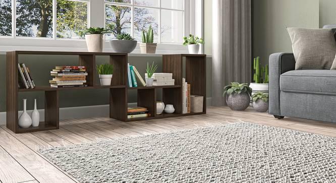 Hayden Display Shelf (35-book capacity) (Californian Walnut Finish) by Urban Ladder - Cross View Full View Design 1 - 384217