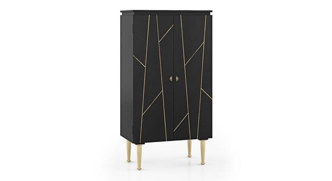 Dante Bar Cabinet (Black) by Urban Ladder - Cross View Design 1 -