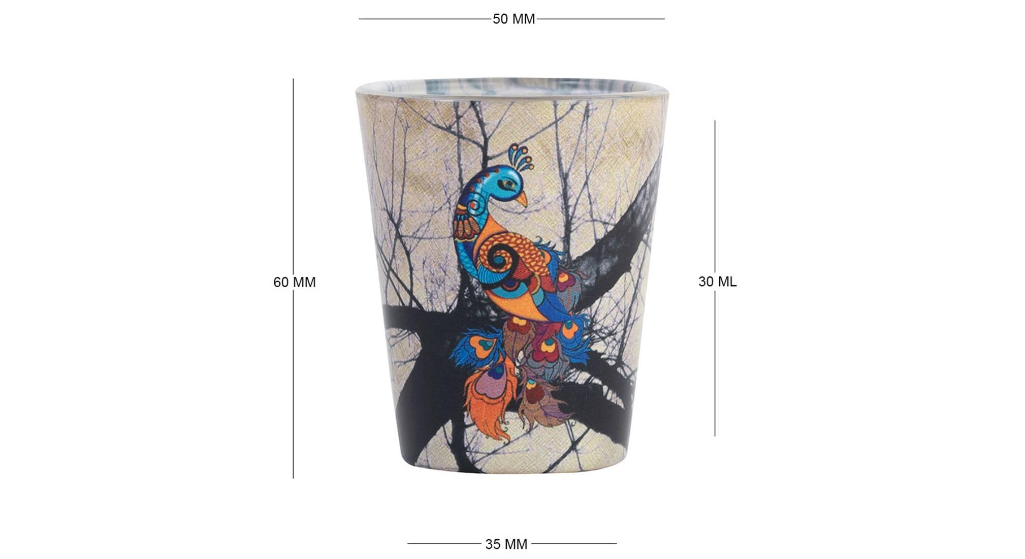 Araxie shot glass set of 2 6