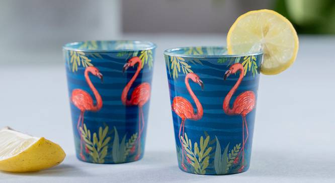 Kailani Shot Glass (Set Of 2 Set) by Urban Ladder - Front View Design 1 - 386156