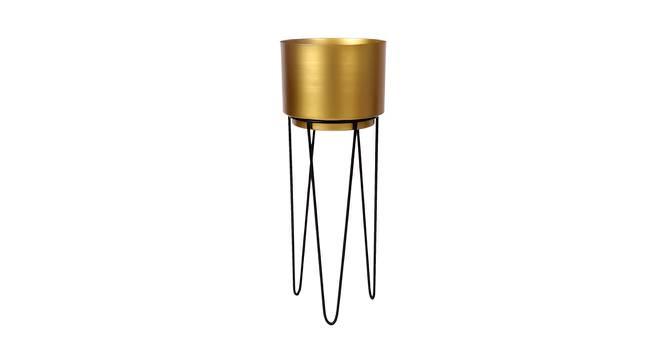Clifton Planter (Gold & Matt Black) by Urban Ladder - Front View Design 1 - 387897