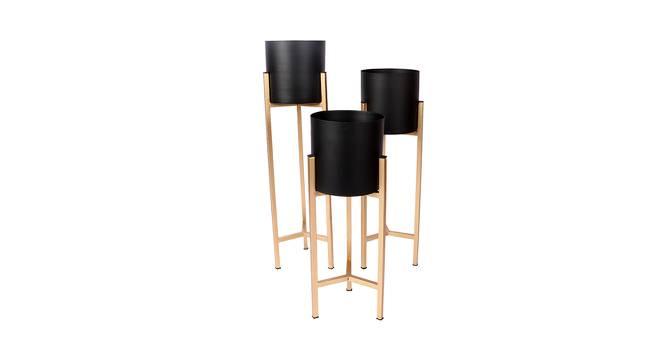 Harlow Planter Set of 3 (Gold & Matt Black) by Urban Ladder - Front View Design 1 - 388616