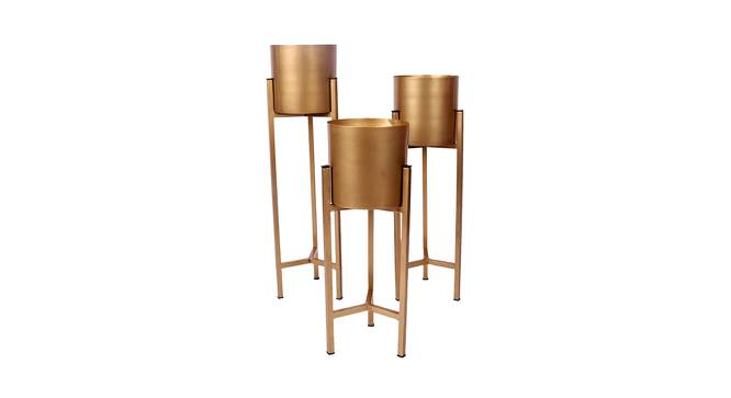 Micah Planter Set of 3 (Gold) by Urban Ladder - Front View Design 1 - 388653