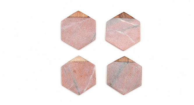 Jacana Coasters Set of 4 (Coral) by Urban Ladder - Front View Design 1 - 392040