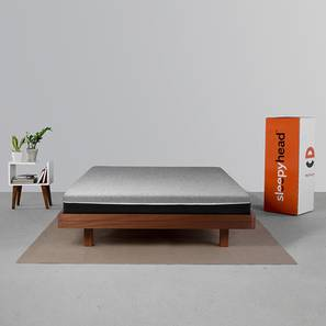Laxe Natural Pincore Latex 6 Inch Mattress (L: 75) (Single Mattress Type, 75 x 36 in Mattress Size, 6 in Mattress Thickness (in Inches)) by Urban Ladder - Design 1 Full View - 407719