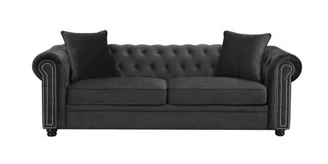 Regina Fabric Sofa(Brown) (Brown, 3-seater Custom Set - Sofas, None Standard Set - Sofas, Fabric Sofa Material, Regular Sofa Size, Regular Sofa Type)