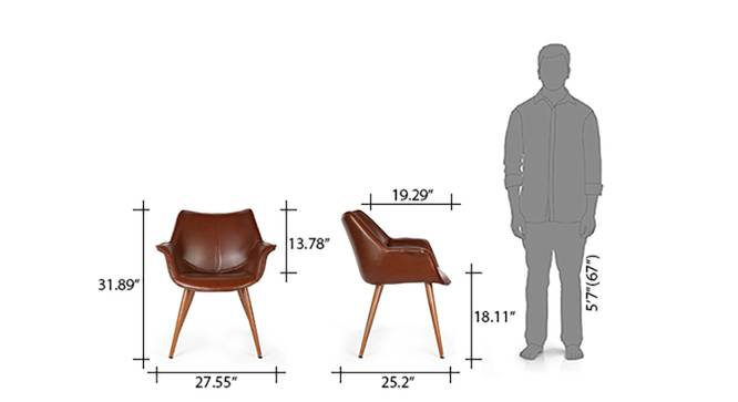 Keaton Lounge Chair (Brown) by Urban Ladder - Template Design 1 - 68184