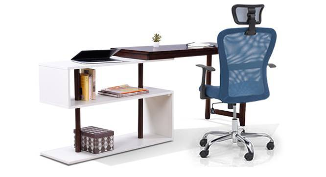 Tolstoy - Venturi Study Set (Aqua, Dark Walnut Finish) by Urban Ladder - - 83806