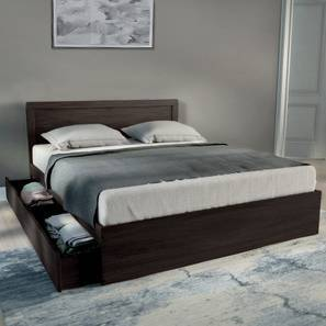 Covelo Storage Bed (Wenge Finish, Queen Bed Size, Drawer & Box Storage Type) by Urban Ladder