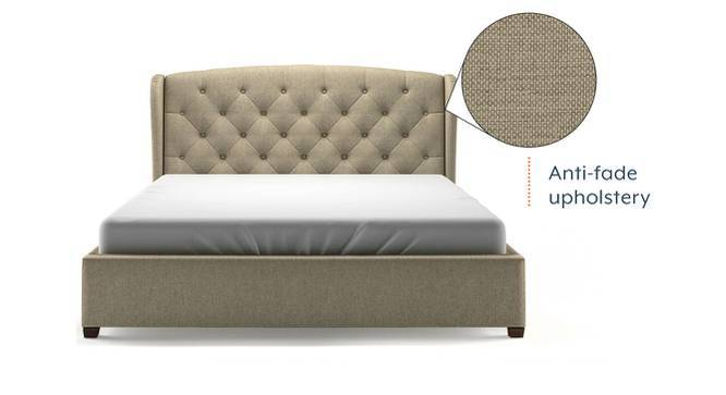 Holmebrook Upholstered Bed (Queen Bed Size, Mist Brown) by Urban Ladder