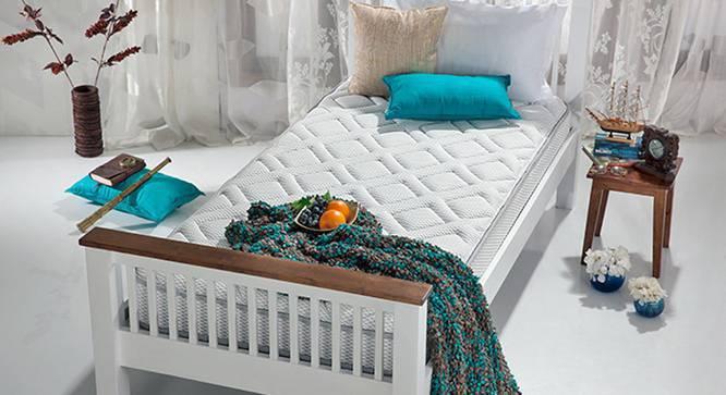 TheraMedic Cocoon Mattress (Single Mattress Type, 78 x 36 in Mattress Size, 5 in Mattress Thickness (in Inches)) by Urban Ladder